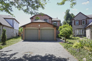 Detached With Basement Apartment Close To Bramalea City Centre