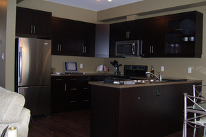 Newer Condo- 4 Bedroom,4 Bath -Near  UWO , Masonville Place