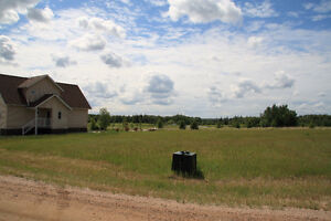 Lac Des Isles Lot For Sale on Northern Meadows  Golf Course