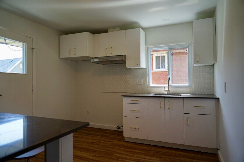 Bright & Comfortable, Newly Renovated 1 Bedroom Apartment ...