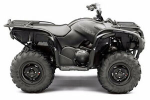 2015 Grizzly 700 EPS SE