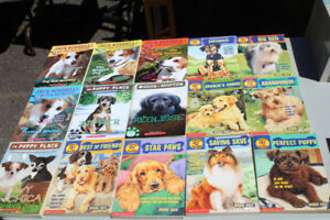 Collection of dog story books!