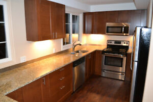 3 Bedroom - Near Queen's and Downtown just off Princess St