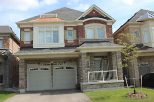 5 BR  detached house for lease - Mississauga Rd/Financial Drive,