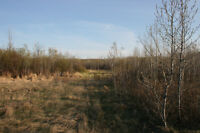 80 Acres for Hunting or Cabin, near Madge Lake SK