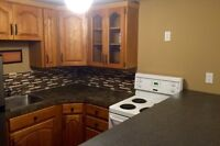 Basement Suite with all utilities included