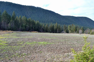 Great Building Lot on South Lakeside Williams Lake Cariboo Area image 8