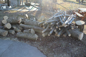 Dry Firewood Peterborough Peterborough Area image 5