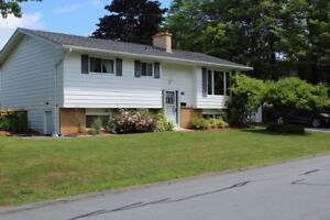 Motivated!! 88 Nordic Cres, Sackville NS (Arden Pickles)