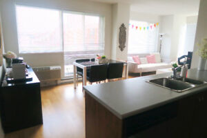 (ONE MONTH FREE) 2-Bedroom Apt $2100 Fully Furnished