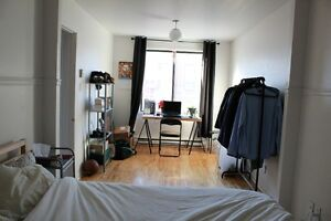Large dog friendly 3 1/2 in trendy St-Henri