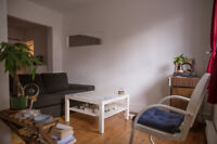 $920 / 2br - 600ft2 - Charming 4 1/2 in Plateau - 2 BR