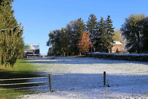 20.5 Acre Hobby Farm for Sale in Oxford County - Bright, Ontario
