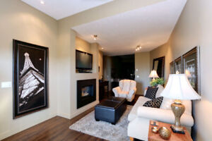 Beautiful fully furnished suite with lake and city views