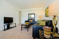 Large & Affordable 1 Bedroom Apartments