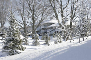 Rented - Carriage Hills @ Horseshoe Valley March Break 9-16,2019