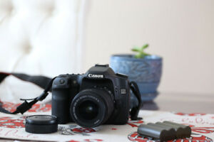 Canon 50D + 18-55/3.5-5.6 IS lens + 4 Battery