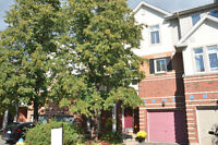 Tranquil End Unit with Views of the Rideau River