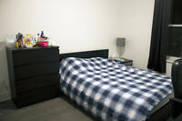 Fully Furnished, Big room in Brand New 4.1/2, Berri-UQAM station