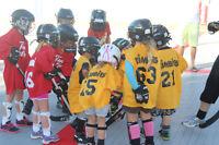 Tiny Tots Instructional Ball Hockey (Born 2012-2013)