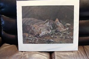 DEBI FITZGERALD SIGNED AND NUMBERED PRINT
