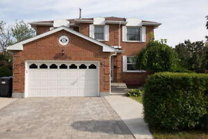 House For Sale at Steeles & Hurontario
