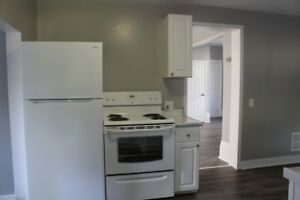 Newly Renovated Lower Unit in the North End