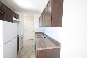 TOTALLY RENOVATED 2 BDRM - ALL UTILITIES AND PARKING INCLUDED! London Ontario image 2