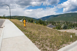 FOR SALE: 3563 Goldie Way, West Kelowna, V4T 1A3
