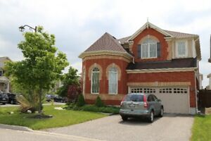 Beautiful Detached House in Cambridge, Available Nov. 4th