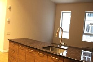 41/2,two,chambres,bedrooms,Vieux Montreal,Centre Ville,Downtown