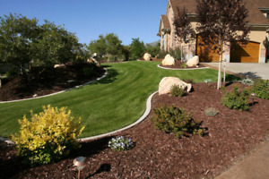 (Affordable Seasonal Offer) Greenscape Lawn And Yard Maintenance
