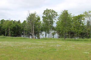 3 Water Front Lots Available
