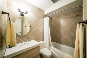 Reduced Short Term Rentals - Move in ready FULLY FURNISHED Edmonton Edmonton Area image 2