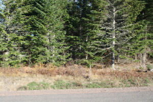 Building Lots on Sale,In Montana Estates 39,000. Awesome  Wooded