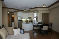 Upgraded Penthouse Condo in Mississauga (2 bed+den; 2 bath)