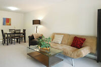 Beautiful and Large- 2 Bedroom Apartments Available