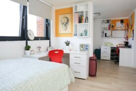 STUDENT ROOM FOR RENT IN LONDON. STUDIO AND EN-SUITE WITH PRIVATE ROOM AND BATHROOM.