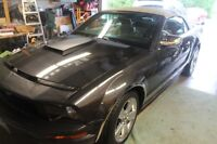 2007 Ford Mustang Chrome Package  Convertible $13,500