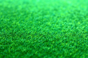 Tower Landscaping & Lawn Care