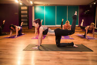 Body Bootcamp Fitness Classes at Serpentine Studios!
