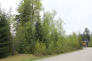 Lot For sale on Cashato Cres.