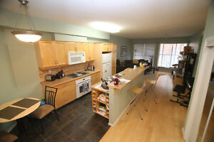 University Condo 2 Bedroom Rental