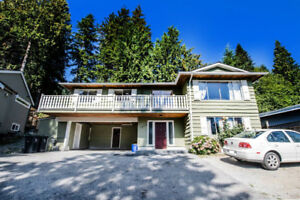 Amazing Opportunity: Lynn Valley Home Priced to Sell