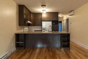Nice and Spacious 4 1/5 Condo + Parking + Storage In Lachine