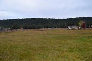 10 acres in Chimney Valley Williams Lake Cariboo Area image 10
