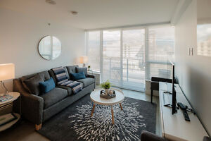 Brand new gorgeous furnished studio apt