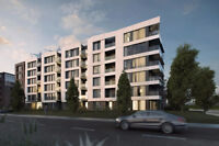 Hôte/Hôtesse - Immobilier/Design