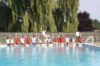Surveillant Sauveteur Piscine - Pool Lifeguard
