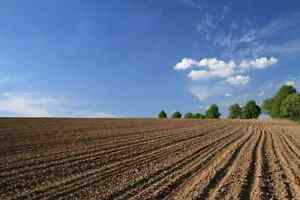 Farm land wanted for rent